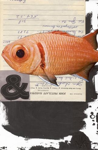 13_fish
